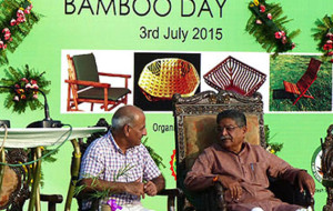 Start-ups should venture in bamboo enterprise