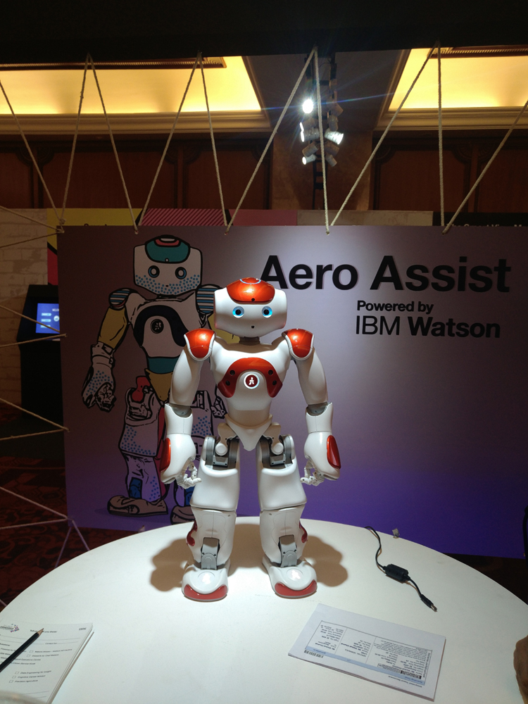 IBM\'s Watson is now powering robots that could soon help us in our daily day to day tasks, such as ease the immigration process at the airports. (Photo: IANS)